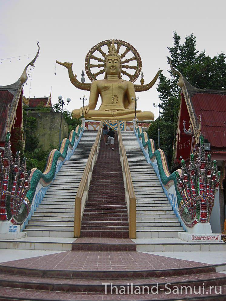 Фотография от подножия Большого Будды