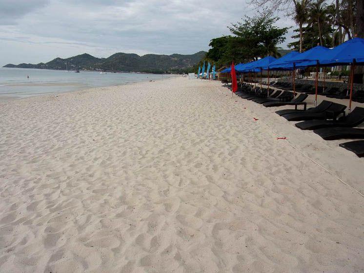 Светлый песок, зонтики от солнца и лежаки (отель Пляж отеля OZO Чавенг Самуи)